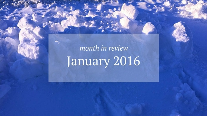 Month in Review: January 2016