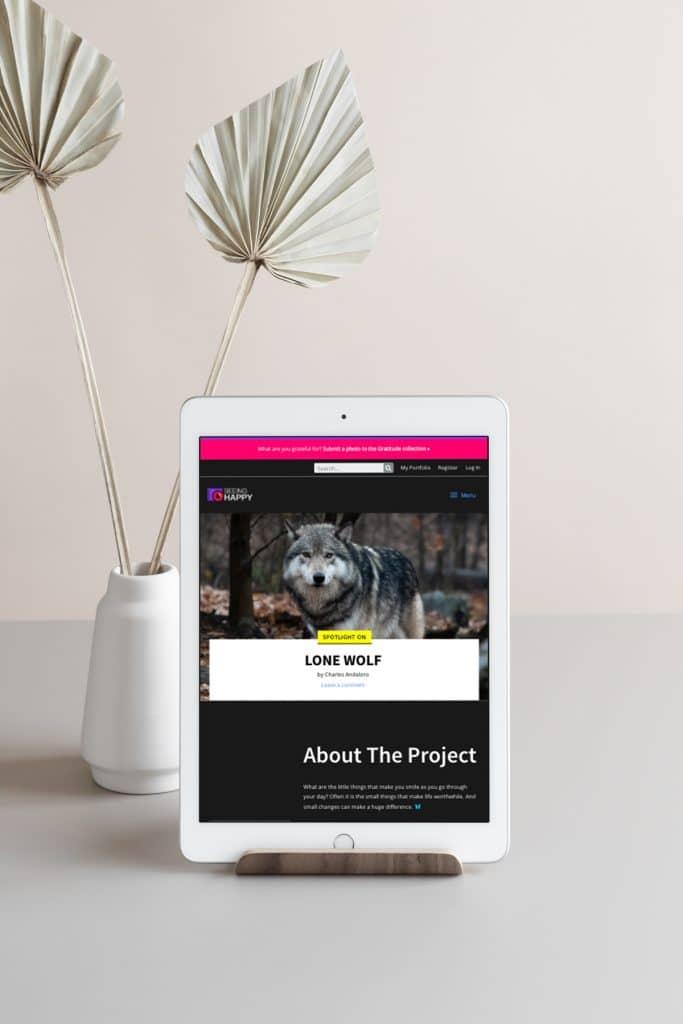 SeeingHappy website